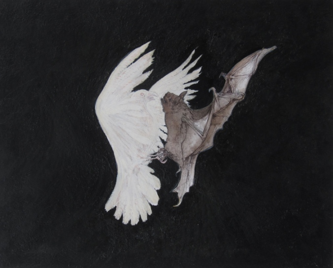 Bat_and_Dove